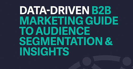 The Data-Driven B2B Marketing Guide to Audience Segmentation & Insights